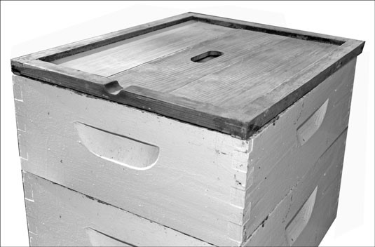 Type of Hives - Ecological Beekeeping - Live and Let Bee